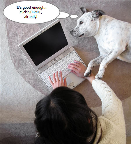 Dog next to owner with laptop