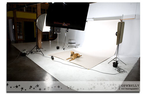 Libby at the studio getting her picture taken